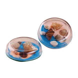 Seashell Paperweight Craft Kit (Pack of 12) - Image 1 of 1