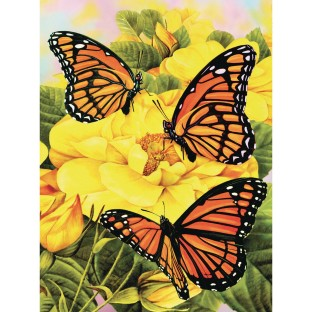 Monarch Butterflies Paint By Number - Image 1 of 1