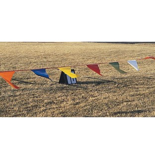 100' Pennant Streamer - Image 1 of 1