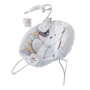 Sweet Snugapuppy™ Dreams Deluxe Bouncer - Image 1 of 6