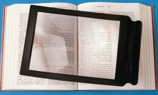 Page Magnifier - Image 1 of 1