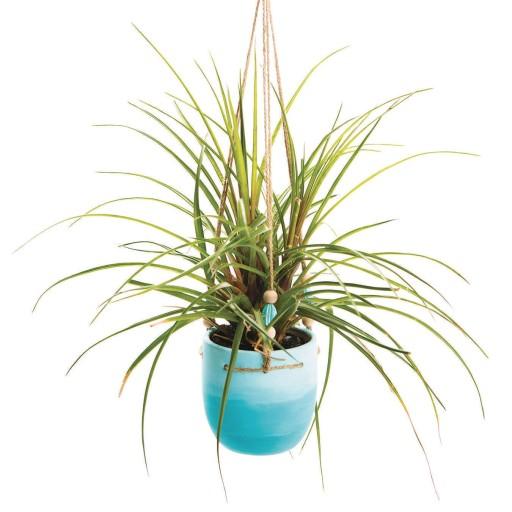 Ceramic bisque Sprout the planter
