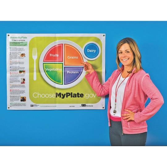 Buy Choose MyPlate Vinyl Poster at S&S Worldwide